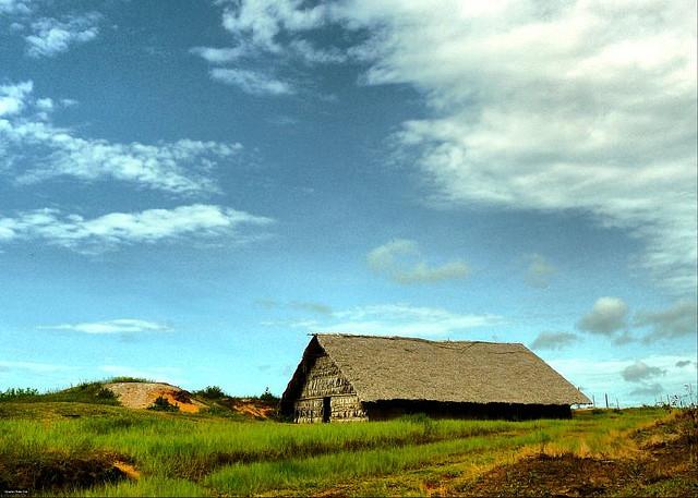Tipos de casa tradicionales